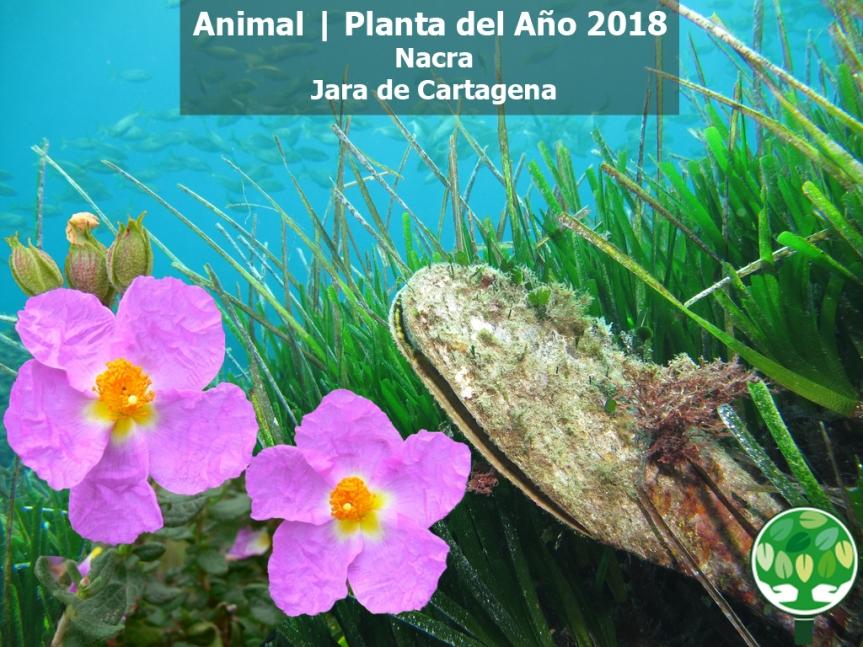 Ganadores Animal Planta del Año 2018