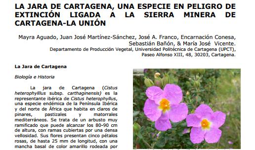 La revista Orígenes y Raíces publica un artículo sobre la jara deCartagena